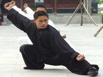 טאי צ'י ואמנויות לחימה סיניות