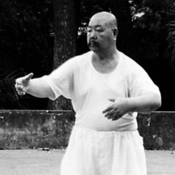 Wang Shu Chin - Master of Chi