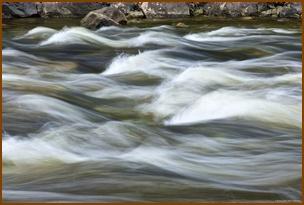 חכמת המים של הטאי צ'י